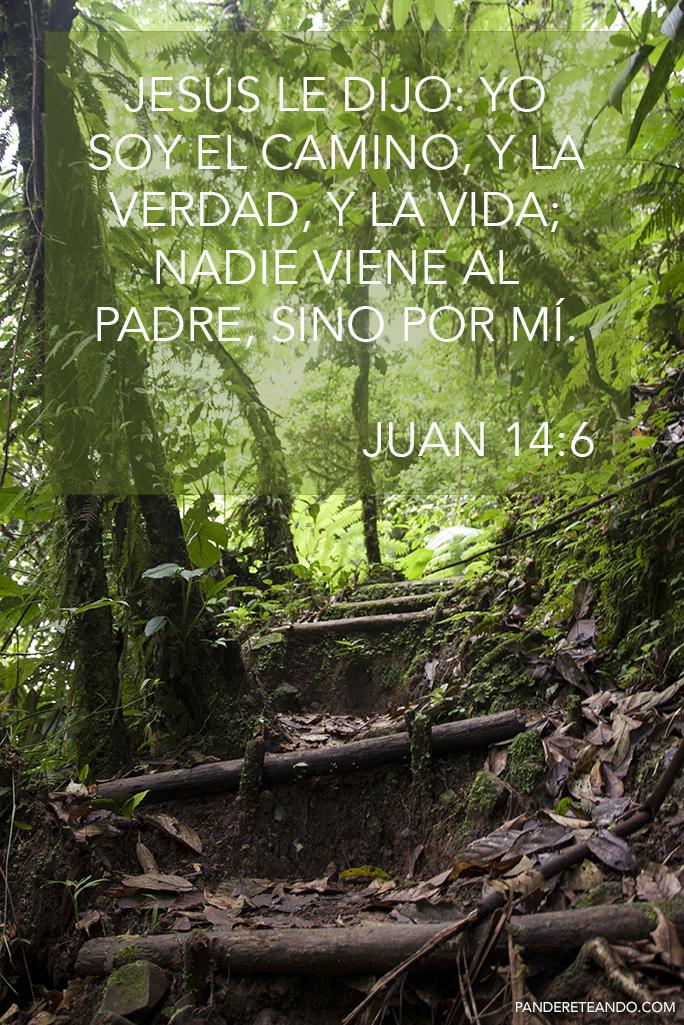 Juan14.6